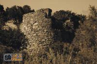 Torre Tonda, altra torre presente nel territorio Lascarese.  - Lascari (5807 clic)