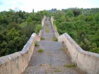 CANICATTINI BAGNI:Il Ponte di S. Alfano,antico costrutto di pietra dell'anno 1796.Al di sopra del ponte,stanno scolpiti,in pietra da taglio del tempo,due personaggi,portanti ciascuno una bottiglia e un pane.Una graziosa leggenda li dipinge come campieri, uno di nome Currarinu e l'altro Calamaru i quali,per odi personali, si uccisero proprio sopra il ponte.Il ponte congiunge il territorio di Canicattini all'exe feudo S. Alfano.......salvatore petruzzelli  - Canicattini bagni (6511 clic)