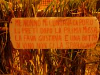 Festa della Fava  - Campofiorito (3819 clic)