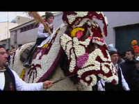 Cavalcata di San Giuseppe a Donnalucata 12 marzo 2006. Cavallo Bardato con fiori di violaciocca (balucu).  - Scicli (2231 clic)