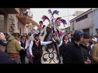 Cavalcata di San Giuseppe a Donnalucata 12 marzo 2006. Cavallo Bardato con fiori di violaciocca (balucu).  - Scicli (5418 clic)