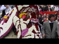 Cavalcata di San Giuseppe a Donnalucata 12 marzo 2006. Cavallo Bardato con fiori di violaciocca (balucu).  - Scicli (1911 clic)