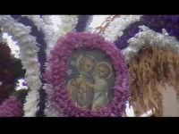 Cavalcata di San Giuseppe a Donnalucata 12 marzo 2006. Cavallo bardato con fiori di violaciocca (bbalucu).  - Scicli (1995 clic)