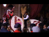 Cavalli bardati con fiori di violaciocca (BALUCU)per la Cavalcata di San Giuseppe, cavalcata che affonda le proprie radici al Medioevo, nella notte dei tempi. Decantata anche dallo scrittore Elio Vittorini nel suo libro 'Conversazioni in Sicilia'.  - Scicli (1523 clic)