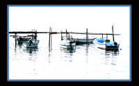 Marsala lo stagnone, barche all'ormeggio  - Marsala (2055 clic)