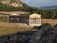 Tempio di segesta, ripreso all'alba  - Calatafimi segesta (4798 clic)