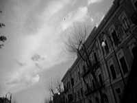 - Palermo (2057 clic)