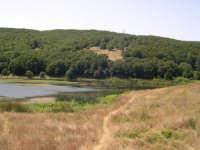 Parziale vista del lago  Biviere  - Nebrodi (4429 clic)