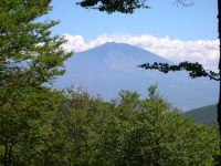 Il Vulcano Etna visto dai monti Nebrodi.  - Nebrodi (5412 clic)