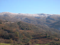 Bosco di Mangalaviti Parco dei Nebrodi  Alberi innevati  - Galati mamertino (5035 clic)