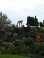 il Tempio di Castore e Polluce  i Dioscuri foto scattata all'interno del Giardino della Kolimbetra presso la Valle dei Templi di Agrigento   - Valle dei templi (7223 clic)