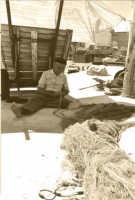 Isola delle femmine,pescatore che cuce le sue reti al porticciolo di Isola delle femmine  - Capaci (3742 clic)