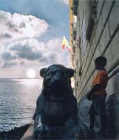 dal palazzo comunale di Palermo,il ragazzo  immaggina un mare con l'orizzonte.Egli sarà il futuro d