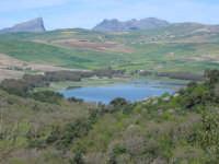 Lago Scanzano visto dal Bosco di Ficuzza a inizio primavera  - Marineo (8289 clic)