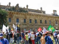 Marcia di Ficuzza del 29 maggio 2005. L'arrivo presso la Casina di caccia  - Ficuzza (4524 clic)