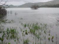 Lago Fanaco  - Castronovo di sicilia (6751 clic)