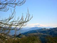 Etna visto da Piano Battaglia (foto di Vincenzo Macaluso).  - Petralia sottana (2180 clic)