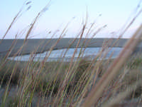 Riserva di Marinello, un laghetto vicino il mare.  - Oliveri (6624 clic)