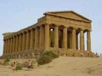 Valle dei Templi - Tempio della Concordia  - Agrigento (3797 clic)