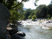 Fiume Alcantara  - Alcantara (6098 clic)