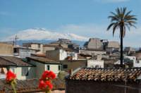 L'Etna vista da Paternò  - Paternò (1967 clic)