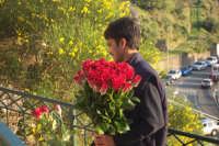 Venditore di rose  - Taormina (5982 clic)