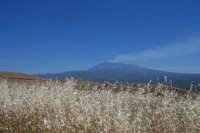 Etna vista da contrada Poggio Cocola.  - Paternò (2084 clic)