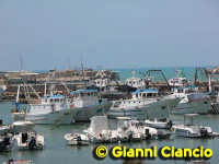 Il porto rifugio  - Scoglitti (7654 clic)
