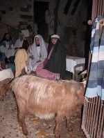 Presepe vivente 2005 le mogli dei pastori  - Caltagirone (5126 clic)