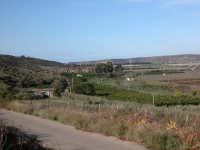 Vallata  - Acate (2164 clic)