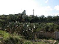Vallata  - Acate (2428 clic)