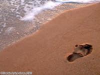 Ancora un altro passo.<font color=#ffffff>spiaggia mare orma estate piede sud</font>  - Isola delle correnti (2114 clic)
