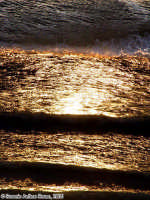 Mareoro (3o scatto)<font color=#ffffff>tramonto mare sole estate sud</font>  - Isola delle correnti (1647 clic)