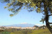 Panorama Panorama con l'Etna nello sfondo  - Regalbuto (4030 clic)