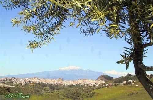 Panorama - REGALBUTO - inserita il