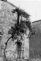 Vecchio Quartiere S. Ignazio Angolo Caratteristico  - Regalbuto (1085 clic)