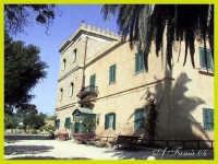 Il Museo  - Mozia (5408 clic)