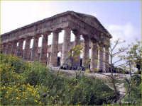 Segesta: Tempio Dorico  - Segesta (4776 clic)
