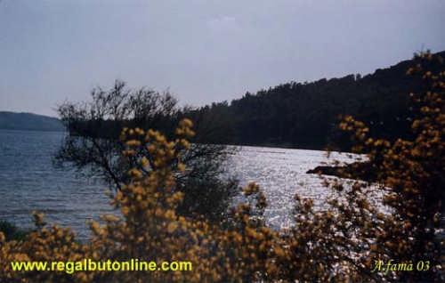 Lago Pozzillo - LAGO DI POZZILLO - inserita il