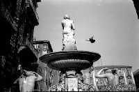 Fontana del fiume Amenano  - Catania (2612 clic)