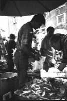 Venditori di pesce alla Pescheria  - Catania (6644 clic)