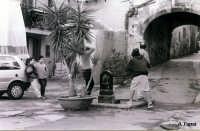 Angolo nel quartiere Capo Momenti di vita quotidiana alla zona Capo  - Palermo (3346 clic)
