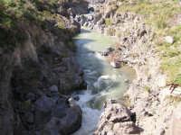 fiume Simeto , presso il Ponte dei Saraceni  - Adrano (6220 clic)
