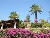 colori di Sicilia  - Taormina (3567 clic)