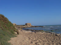 - Punta braccetto (4975 clic)