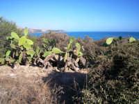 Promontorio di Eraclea Minoa  - Eraclea minoa (2208 clic)