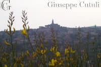 Vista dal monte Serra della citta di Trecastagni  - Viagrande (2398 clic)