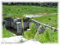 Anfiteatro Romano Particolare dell'Anfiteatro Romano  - Siracusa (2914 clic)