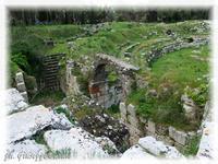 Anfiteatro Romano Particolare dell'Anfiteatro Romano  - Siracusa (2786 clic)