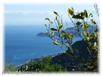 Mar Ionio Costa Ionica  - Forza d'agrò (5930 clic)